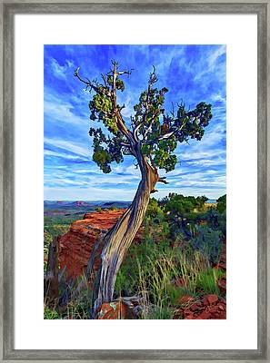 Doe Mountain Juniper Framed Print