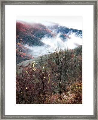 Doe On Autumn Ridge Framed Print