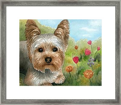 Dog 117 Framed Print