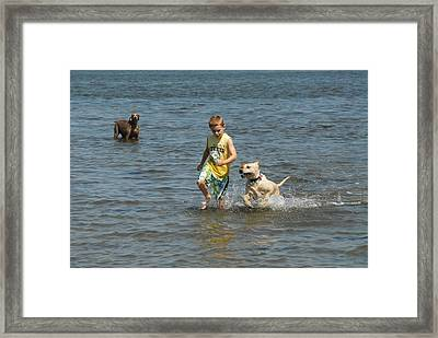 Dog 79 Framed Print by Joyce StJames