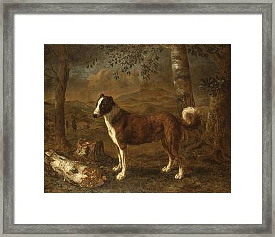 Dog And A Birch Log Framed Print by Govert Dircksz Camphuysen