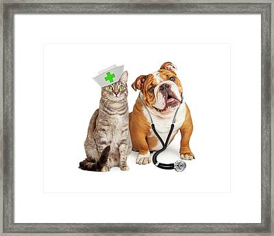 Dog And Cat Veterinarian And Nurse Framed Print by Susan Schmitz