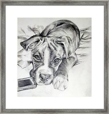 Dog And Phone Framed Print