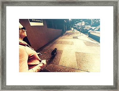 Dog Assisting Blind Woman On Urban Street Framed Print by Jorgo Photography - Wall Art Gallery