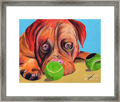 Dog  Ball Framed Print