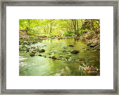 Dog Creek Framed Print by Linda Steider