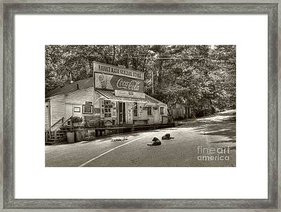 Dog Day Afternoon Sepia Tone Framed Print by Mel Steinhauer