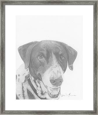 Dog Drawing Orion Framed Print