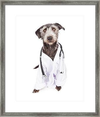 Dog Dressed As Veterinarian Framed Print by Susan Schmitz