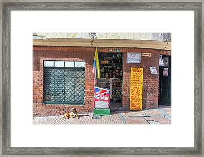 Dog In Front Of A Shop Framed Print by Jess Kraft