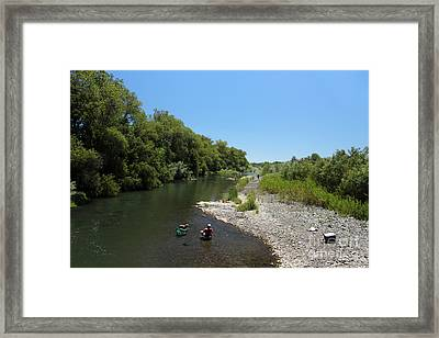 Dog In The Russian River, Asti, Alexander Valley, Sonoma County, California, Usa Framed Print
