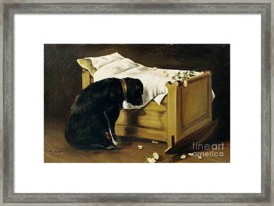 Dog Mourning Its Little Master Framed Print by A Archer