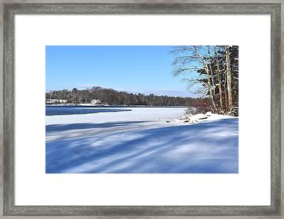 Dog Pond In Winter 1 Framed Print