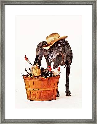 Framed Print featuring the photograph Dog Sitter by Susan Stone
