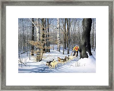 Dog-sled Racing Framed Print by Conrad Mieschke