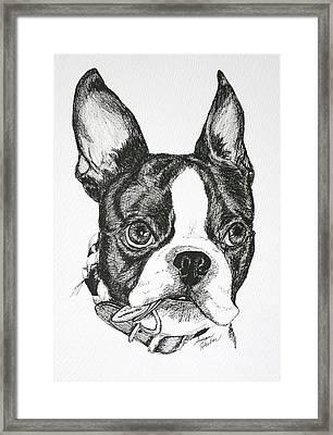 Dog Tags Framed Print