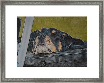 Dog Tired Framed Print by Arlette Seib