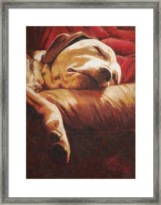 Dog Tired Framed Print by Billie Colson