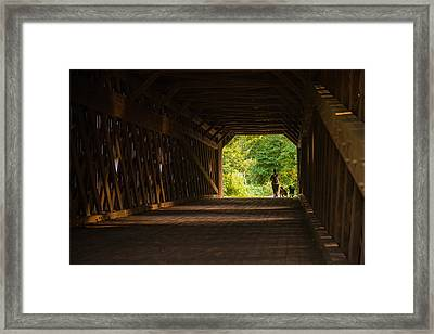 Dog Walking Framed Print by Kristopher Schoenleber
