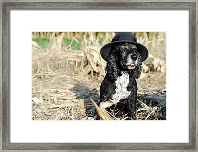 Dog With A Hat Framed Print