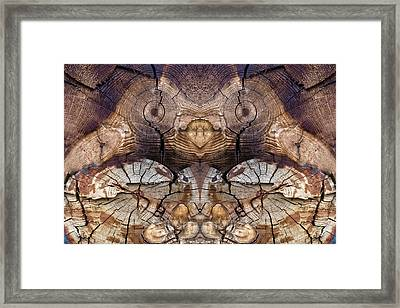 Dog-wood Owl Framed Print