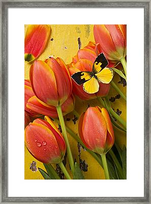 Dogface Butterfly And Tulips Framed Print