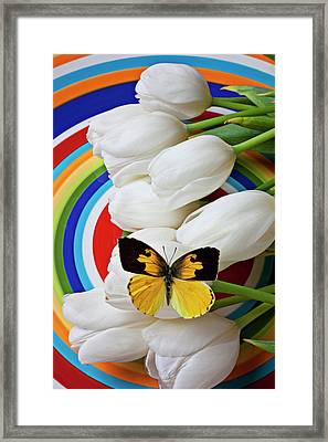 Dogface Butterfly On White Tulips Framed Print by Garry Gay