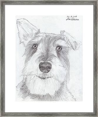 Doggie Framed Print