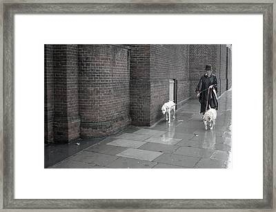 Doggie Strolling 1 Framed Print by Jez C Self