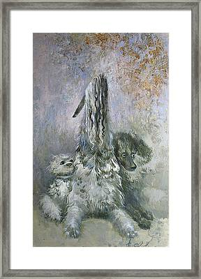 Doggies  Framed Print