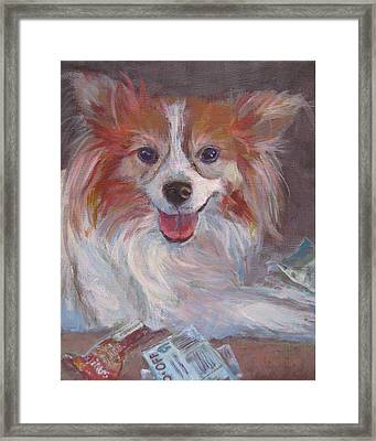 Doggy Likes To Play With Coupons Framed Print