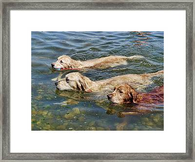Dogs Are People Too Framed Print