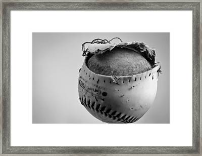 Dog's Ball Framed Print