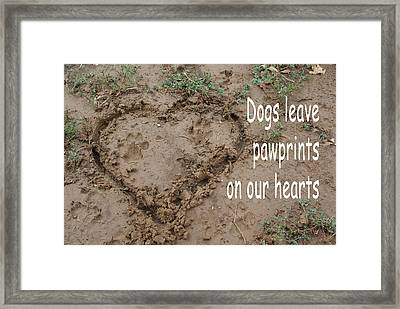 Dogs Leave Pawprints Framed Print by Robyn Stacey
