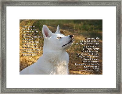 Dog's Prayer Now I Lay Me Down To Sleep Framed Print by Robyn Stacey