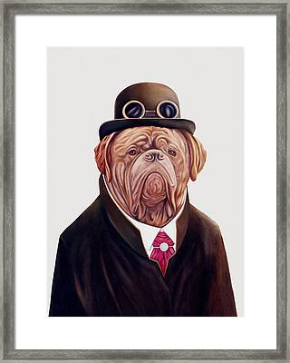 Dogue De Bordeaux Framed Print by Animal Crew