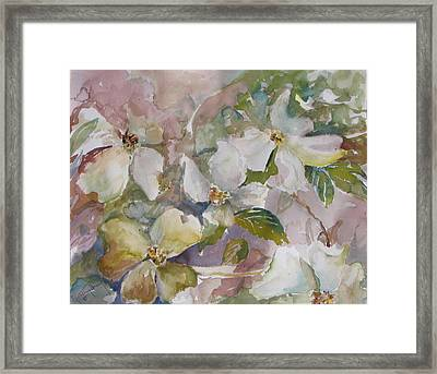 Dogwood Framed Print by Dorothy Herron