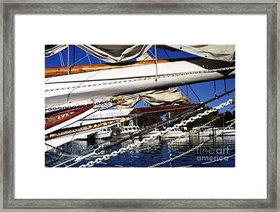 Dogwood Harbor Framed Print