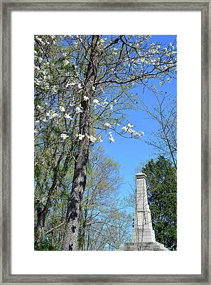 Dogwoods On Crest Of Kings Mountain National Military Park Framed Print by Bruce Gourley