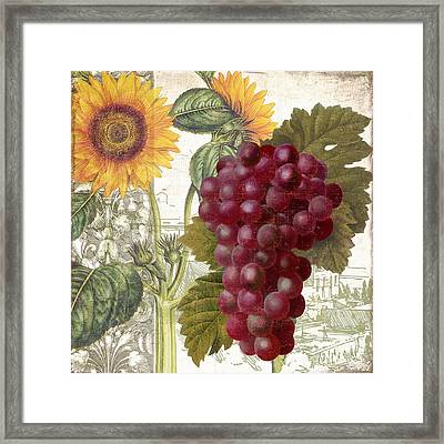 Dolcetto II Framed Print by Mindy Sommers