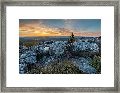 Monongahela National Forest Dolly Sods Wilderness Sunrise Framed Print