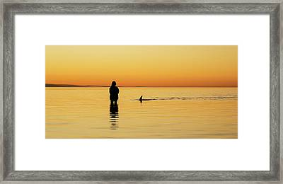 Dolphin And Girl Framed Print by Gary Wright