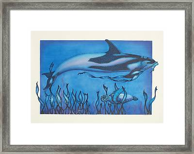 Dolphin And Turtle Framed Print by Erik Loiselle