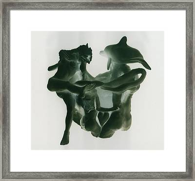 Dolphin Bonds Framed Print by Frederick Dost