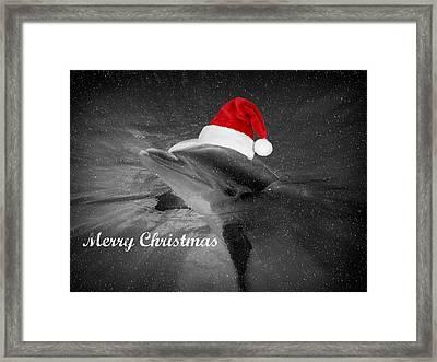 Dolphin Christmas Framed Print