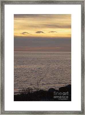 Dolphin Cloud Sunset Framed Print