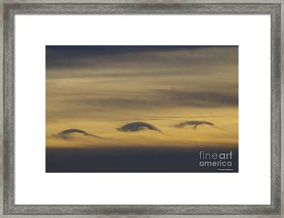 Dolphin Clouds Framed Print