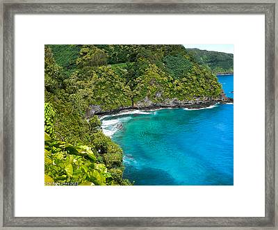 Framed Print featuring the photograph Dolphin Cove by Debbie Karnes