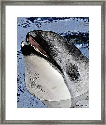 Dolphin Dentition Framed Print by Larry Linton