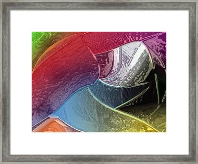 Dolphin Framed Print by Patrick Guidato